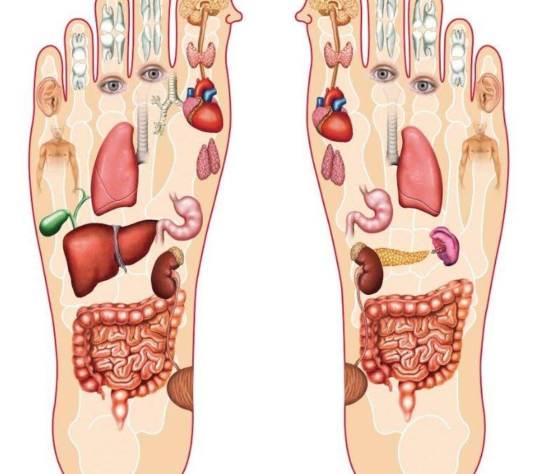 Interview sur le blog Prontopro «Faire disparaître les déséquilibres de son corps grâce à la réflexologie «